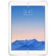 iPad Air 2 Parts